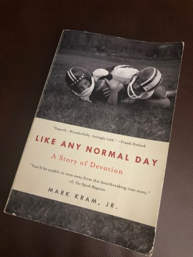 Like Any Normal Day Book